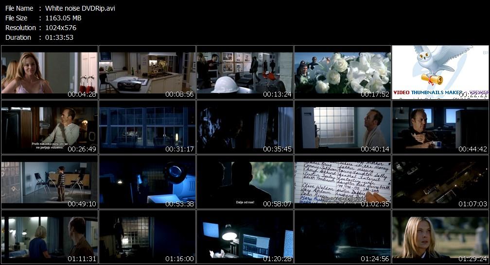 White_noise_DVDRipavi.jpg